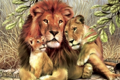 big-images-of-lions
